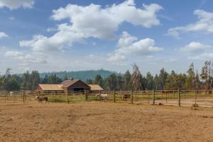 Stag Lane 3, Holiday homes  Sunriver - big - 23