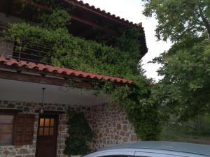 cottage house - Nerotriviá