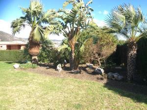 Del Parque Flats - Castillon, Ferienwohnungen  Rincón de la Victoria - big - 6