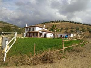Villa olivar pajaron