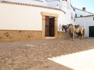 Casa Rural Las Nieves, Ferienhöfe  Garrovillas - big - 20