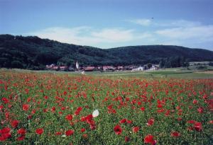 Landgasthof Wagner