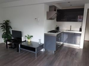 Cosy apartment in the center with a FREE PARKING, Apartmanok  Eindhoven - big - 1