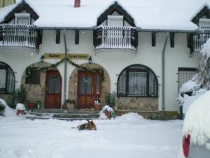 Kaiser Apartman, Ferienwohnungen  Hévíz - big - 22
