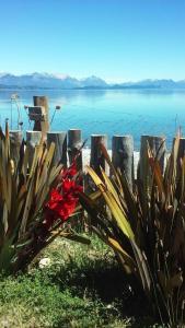 La casa de Ambika, Penziony  San Carlos de Bariloche - big - 12