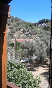 Megalos Mourtias, Ferienwohnungen  Alonnisos Old Town - big - 6