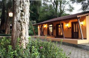 Pousada Solar dos Vieiras, Guest houses  Juiz de Fora - big - 4