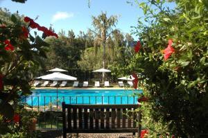 Quinta da Bela Vista (21 of 60)