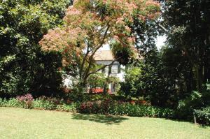 Quinta da Bela Vista (2 of 60)