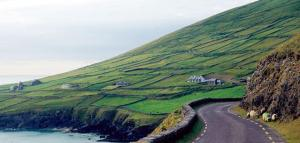 Dingle Cottage, Case vacanze  Dingle - big - 5