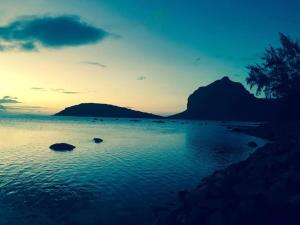 Ideal for kite surfer&family, Appartamenti  Le Morne - big - 1