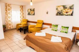 Villa Chesa, Hotels  Corunca - big - 5