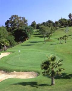 Apartamentos Greenlife Golf, Appartamenti  Marbella - big - 15