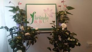 Florinda B&B Viareggio - AbcAlberghi.com