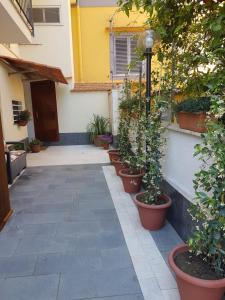 Casa Aristide, Bed & Breakfast  Sant'Agnello - big - 8