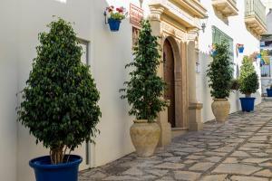 Apartamentos Turísticos Casa de La Borrega, Appartamenti  Estepona - big - 76