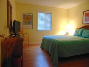 Ocean Walk Resort 3 BR MGR American Dream, Ferienwohnungen  Saint Simons Island - big - 19