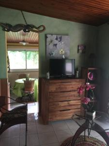 Appartement Dolores, Apartmány  Le Bois de Nèfles - big - 15