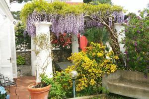 Villa Bianca, Vily  Capri - big - 12