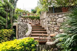 Villa Bianca, Vily  Capri - big - 50