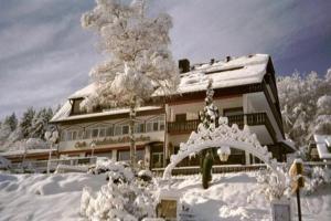 Waldschlösschen, Hotely  Bad Herrenalb - big - 7