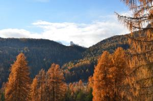 Overlooking the Dolomites - AbcAlberghi.com