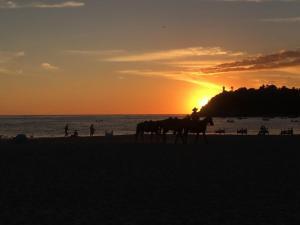 Liza's, Ferienwohnungen  Puerto Escondido - big - 2