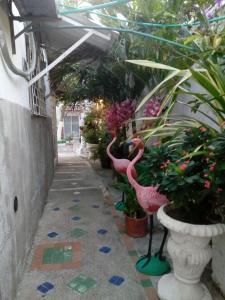 Marbella Hermosas Habitaciones