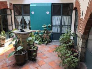 Meson del Penasco, Apartmány  Oaxaca City - big - 19