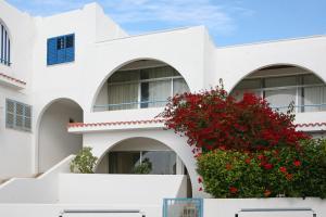 Ambelones Apartments, Апартаменты  Писсури - big - 48