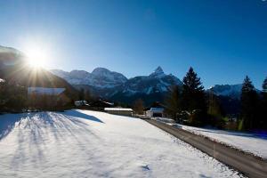 Chalet Danninger, Alpesi faházak  Ehrwald - big - 24