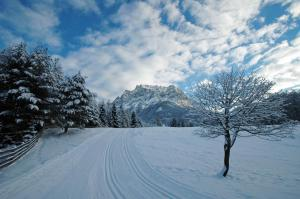 Chalet Danninger, Alpesi faházak  Ehrwald - big - 8