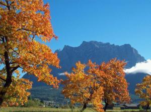 Chalet Danninger, Alpesi faházak  Ehrwald - big - 4