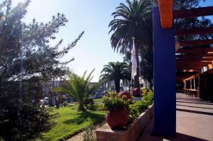 Hotel Pacifico, Отели  Algarrobo - big - 39