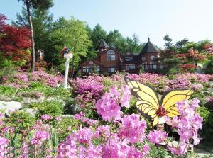 Pyeongchang Forest Hotel, Hotels  Pyeongchang  - big - 166