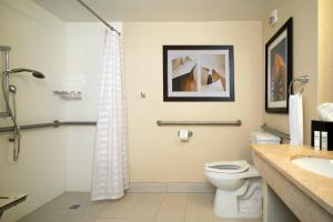 King Room - Mobility Accessible with Roll-in Shower
