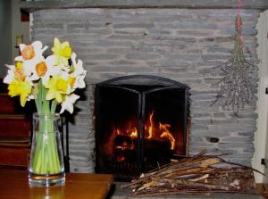 Applewood Cottage, Nyaralók  Callicoon - big - 18