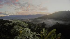 Hacienda La Chiquita, Nyaralók  Manizales - big - 48