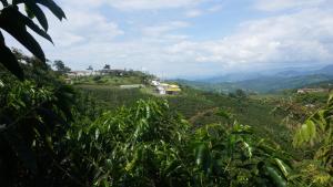 Hacienda La Chiquita, Nyaralók  Manizales - big - 57