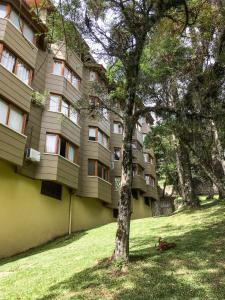 Lagos de Gramado, Apartments  Gramado - big - 17