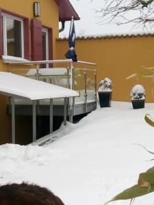 Swiss Borzoi House, Panziók  Bellerive - big - 7