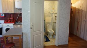 Однокомнатный апартамент в центре - Maloye Chusovo