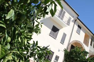 B&B La Residenza Torchiara, Bed and Breakfasts  Torchiara - big - 41