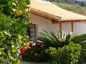 Casitas Rosheli, Appartamenti  Los Llanos de Aridane - big - 12