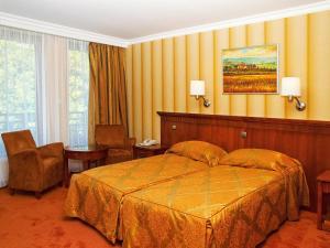 Silvanus Hotel, Hotels  Visegrád - big - 6
