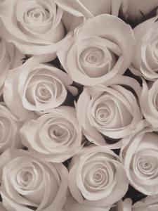 La Rose Blanche, Ferienwohnungen  Prag - big - 2