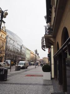 La Rose Blanche, Apartmány  Praha - big - 14