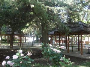 Exclusive Centro Turistico, Chaty v prírode  Maipú - big - 33