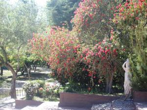 Exclusive Centro Turistico, Chaty v prírode  Maipú - big - 34