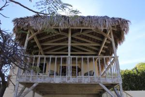 Casita de Árbol, Ferienwohnungen  Loreto - big - 1